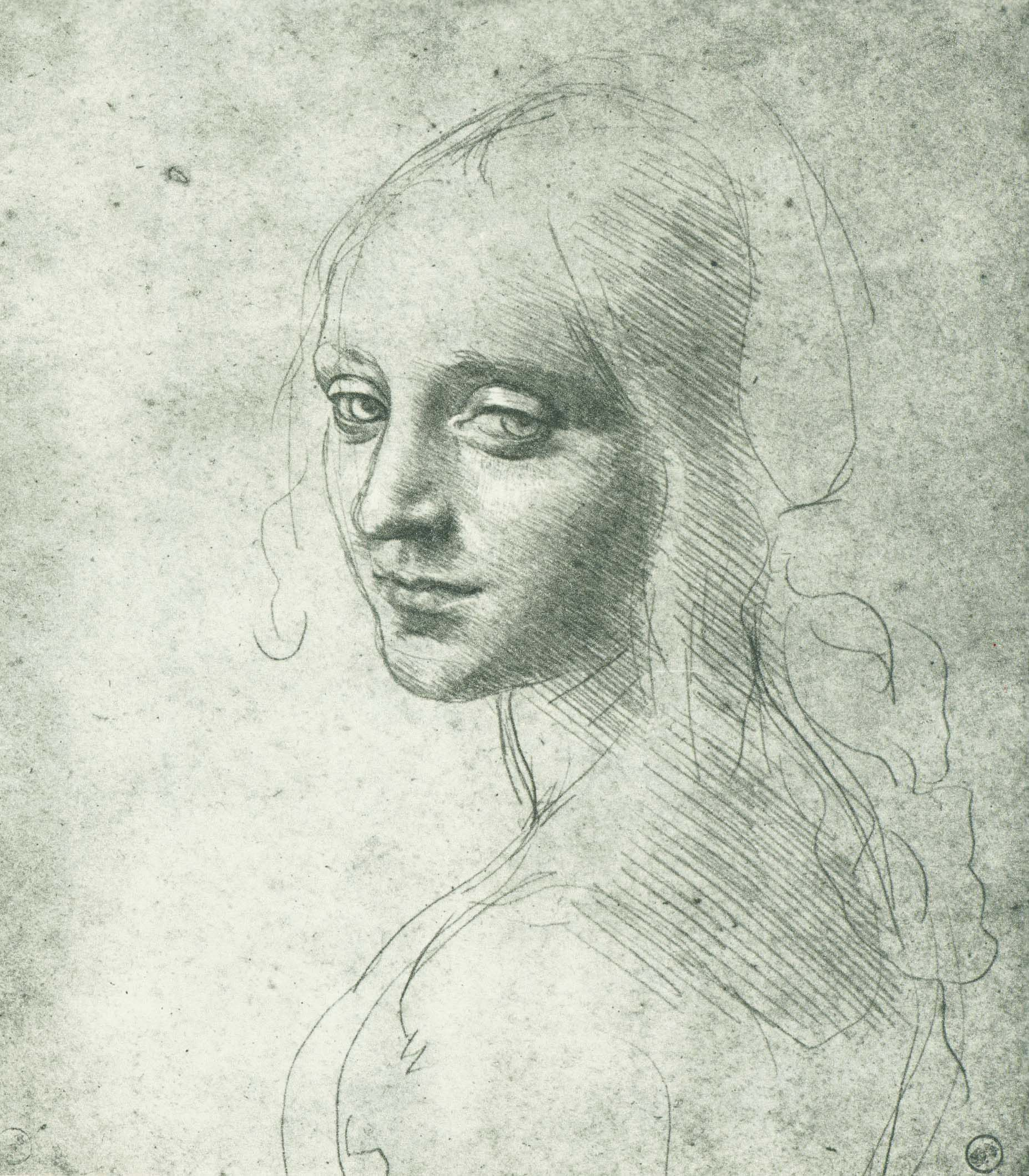 Contour Line Drawing Leonardo Da Vinci : Could leonardo da vinci draw really artamaze by