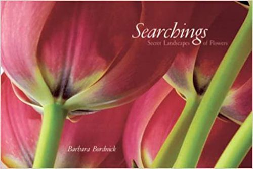 SearchingsBarbaraBordnick_